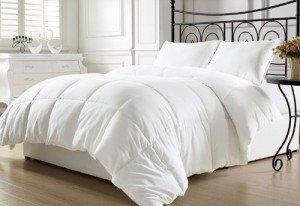 White Goose Down Alternative Comforter With Corner Tab