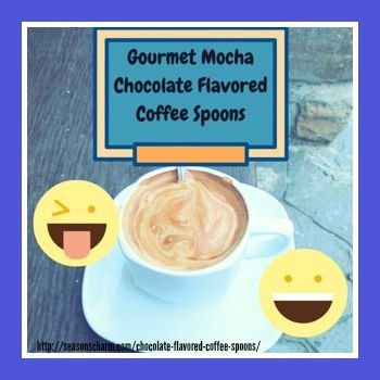 Gourmet Mocha Chocolate Flavored Coffee Spoons