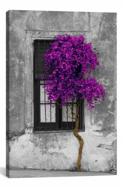 Tree in Front of Window Giclée Print Canvas Art