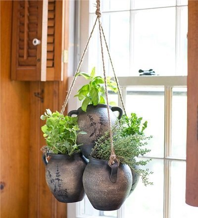 Hanging Clay Herb Planter Kit