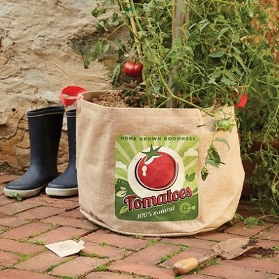 Tomato Planting Bag And Seeds