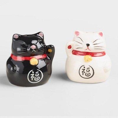 Lucky Cat Salt And Pepper Shaker Set